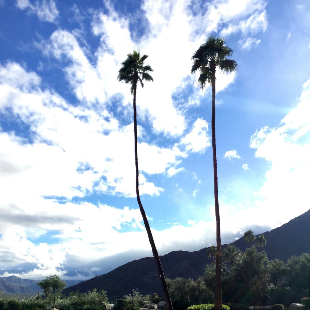 001 - dFm House @ Coachella.jpg