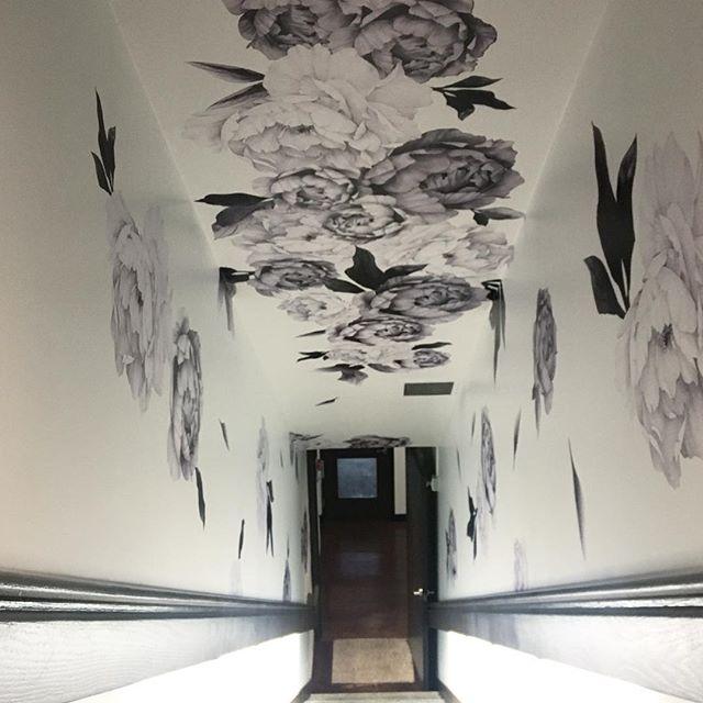 Pennie install at our favourite spot 🖤 @opusbar @lapentola . . . . #interiordesign #decor #decal #wallart #hotelart #hotelvibes #wallpaper #largescaleprint