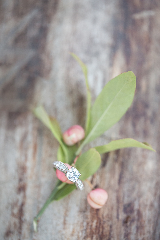 Engagement | M&I-233.jpg