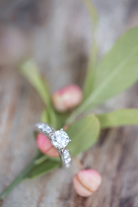 Engagement | M&I-234.jpg