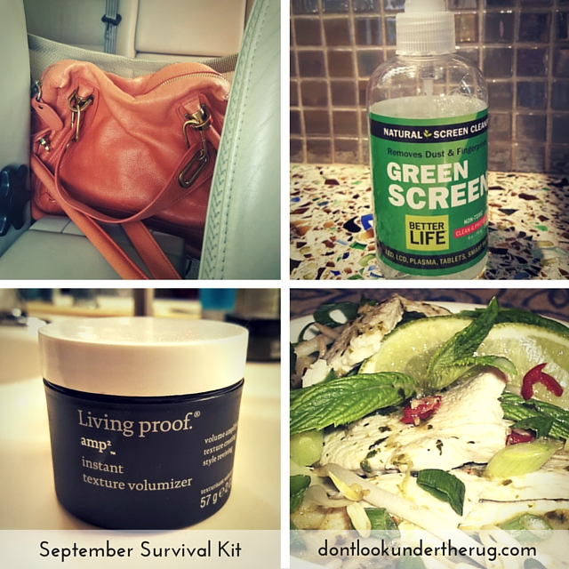 amy-bates-dont-look-under-the-rug-september-survival-kit.jpg