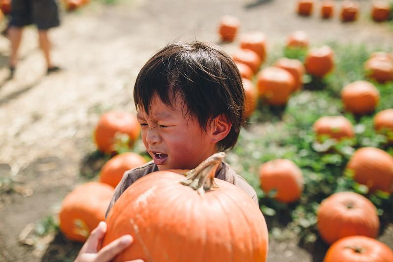 CalPolyPumpkinPatch_024.jpg