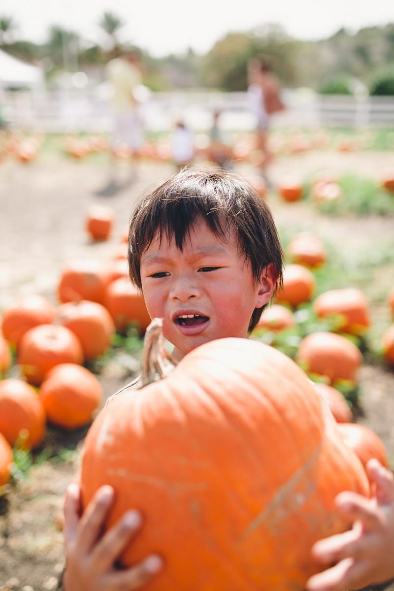 CalPolyPumpkinPatch_025.jpg