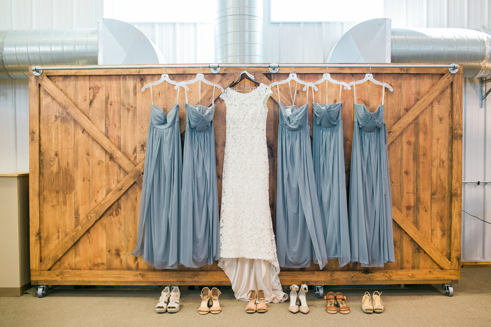 Bride and bridesmaid dresses at rural Minnesota wedding
