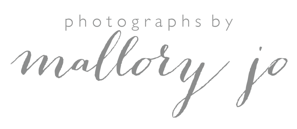 Minnesota Wedding Photographer | Photographs by Mallory Jo