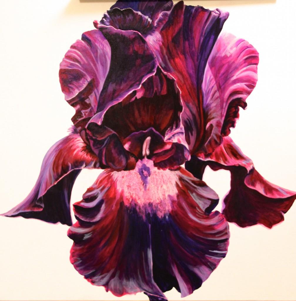 Helen Shideler - Black Velvet Iris painting