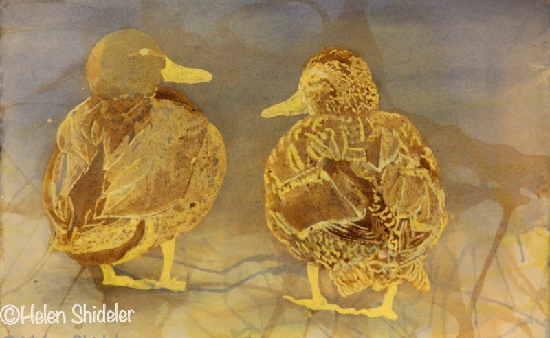 How U Doin? Poured Watercolour by Helen Shideler