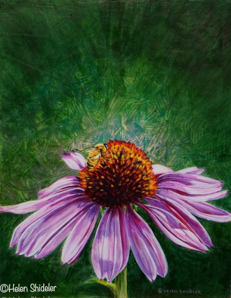 Garden Classic by Helen Shideler