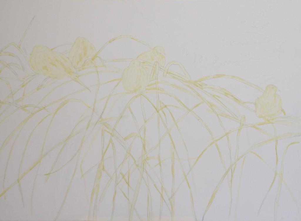 Helen Shideler - Birds of a Feather - WIP