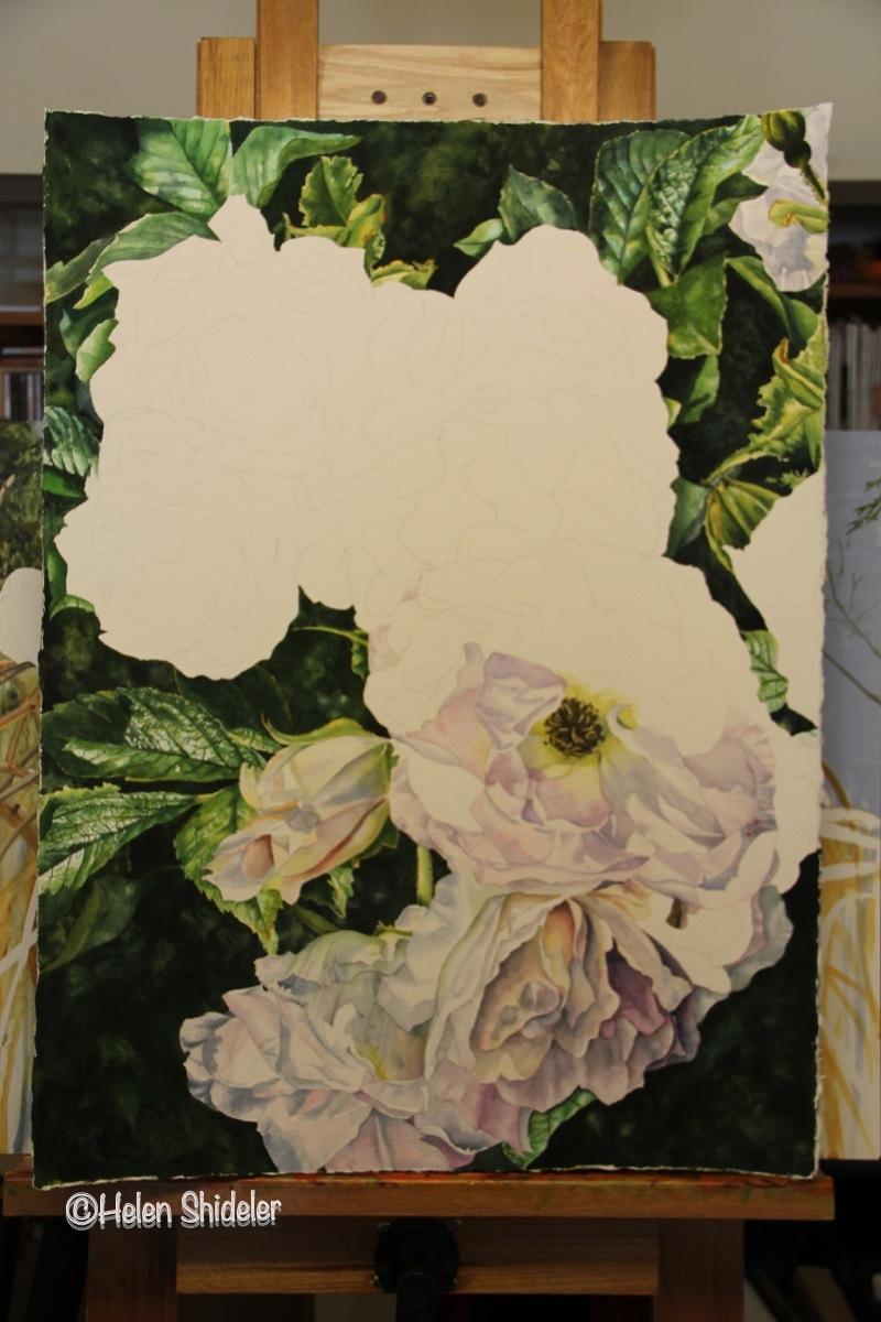 Yesterday's Blooms - WIP Helen Shideler