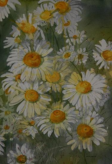 daisy-fresh