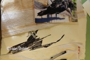 WIP Raven by Helen Shideler