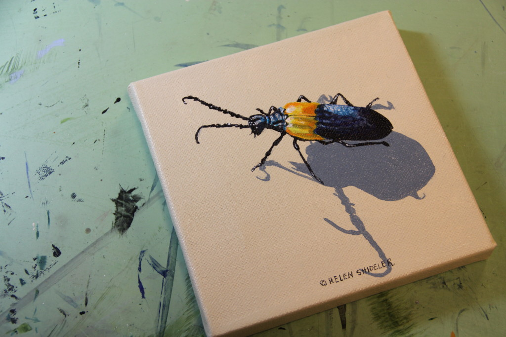 Bug painting by Helen Shideler