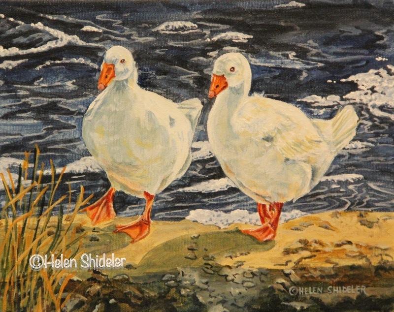 Wandering Waddlers by Helen Shideler