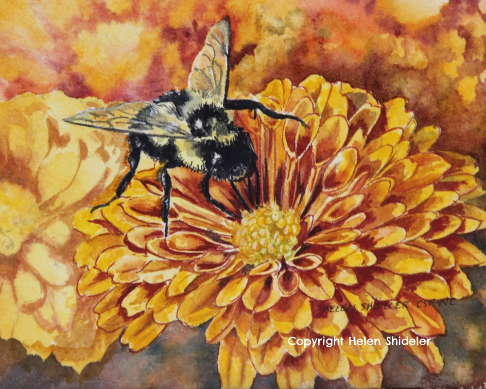 Bee-utiful by Helen Shideler