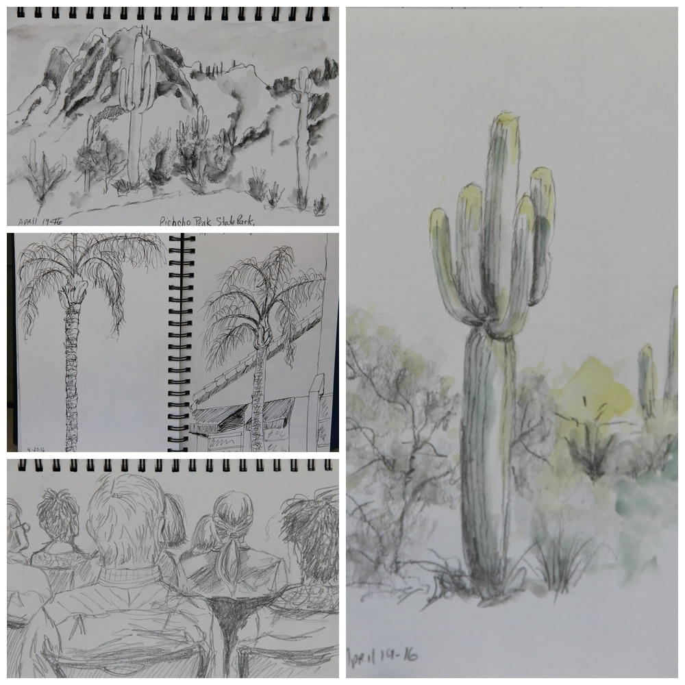 Sketches by Helen Shideler