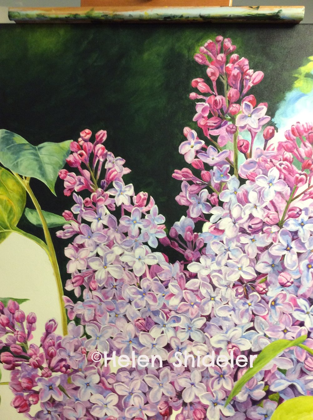 Spring Scentsation WIP by Helen Shideler