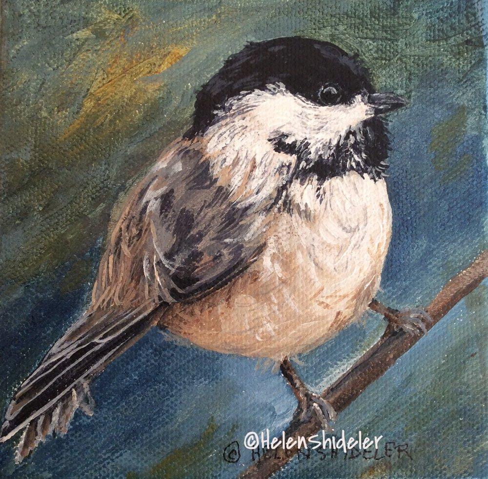 Chickadee dee dee by Helen Shideler