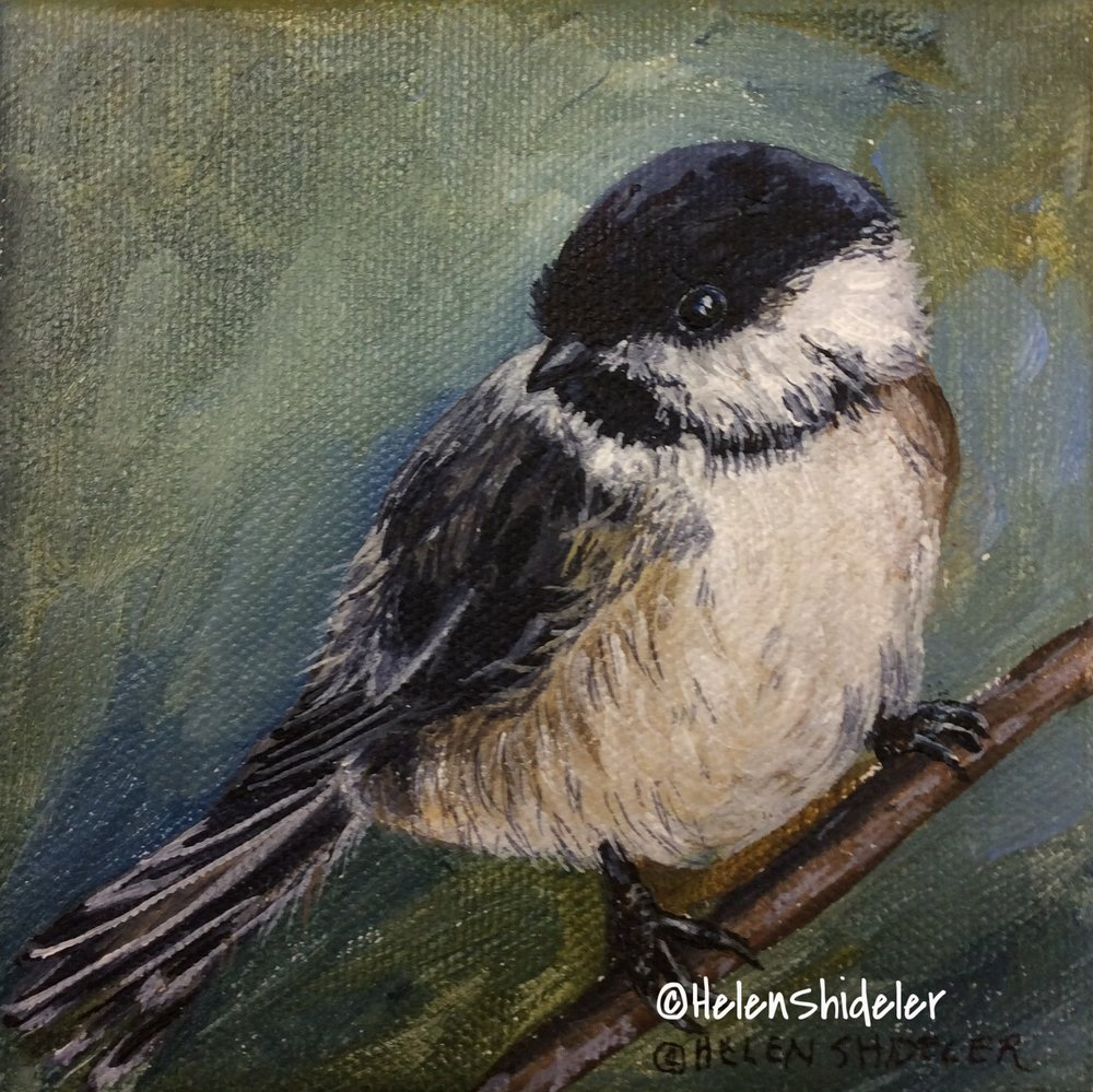 Chickadee by Helen Shideler