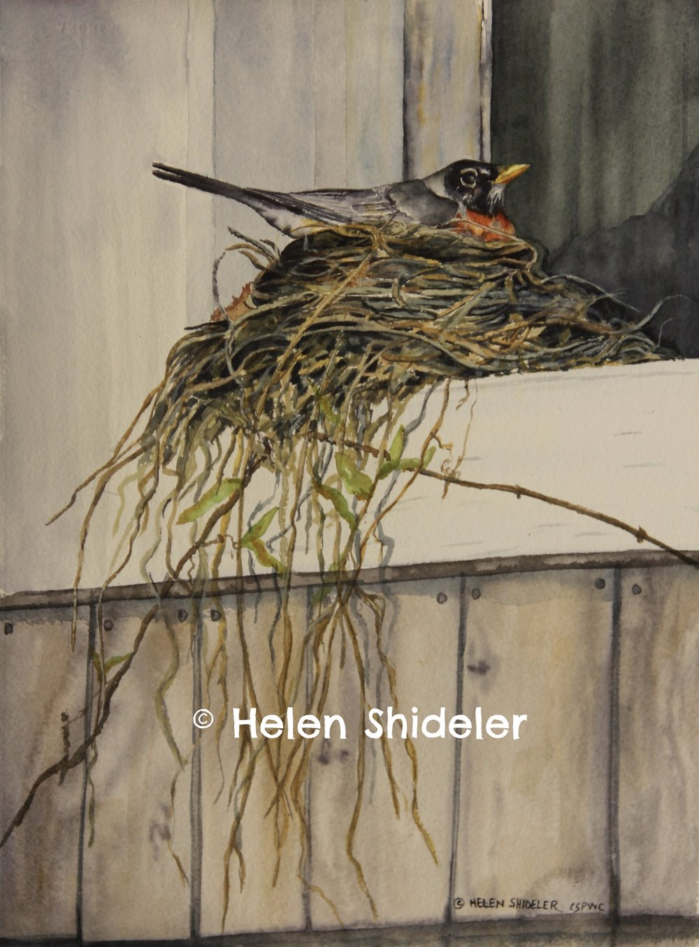Anxiously Waiting by Helen Shideler