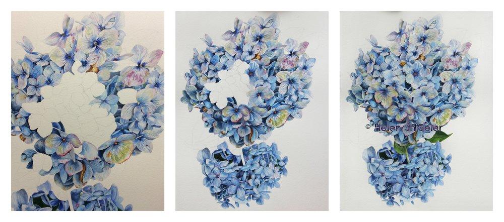 Helen Shideler art
