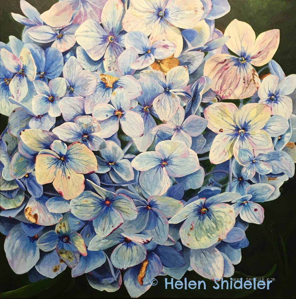 Tender Blues by Helen Shideler