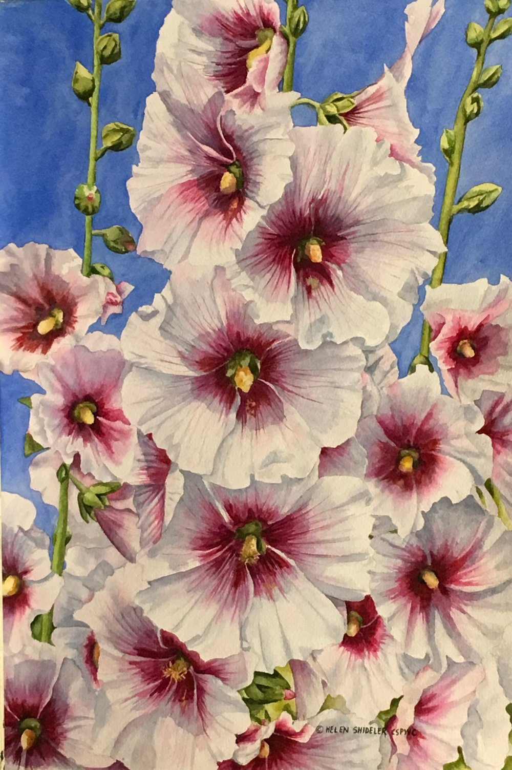 Country Garden Favourite by Helen Shideler
