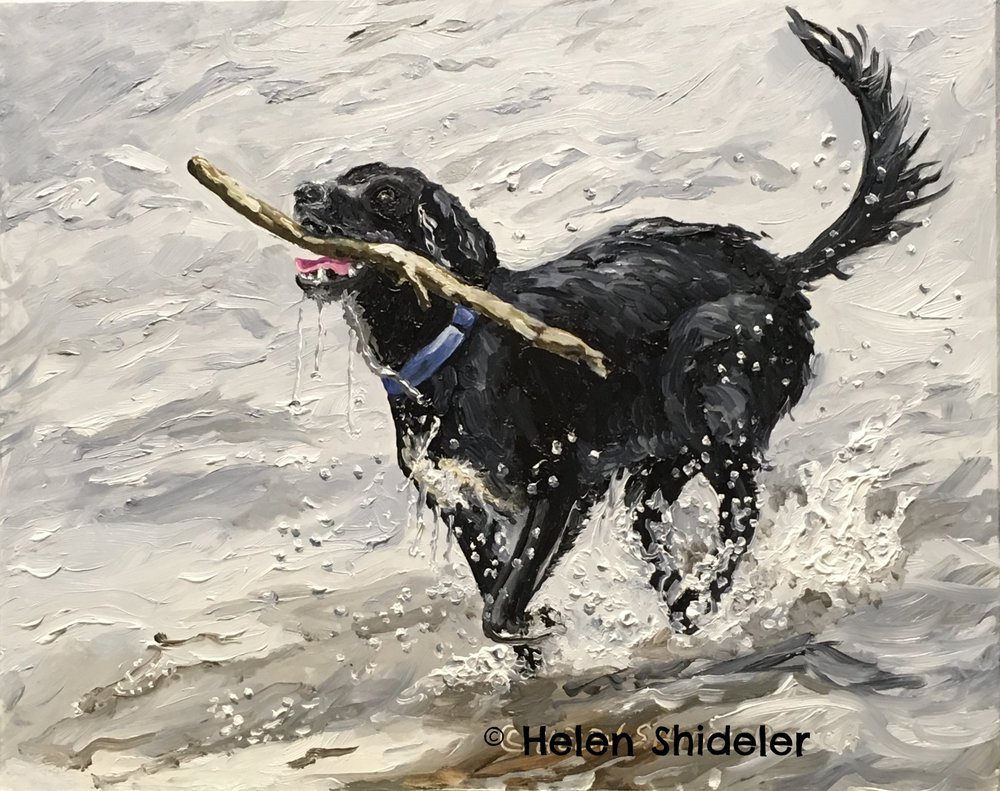 Fetching Fun by Helen Shideler