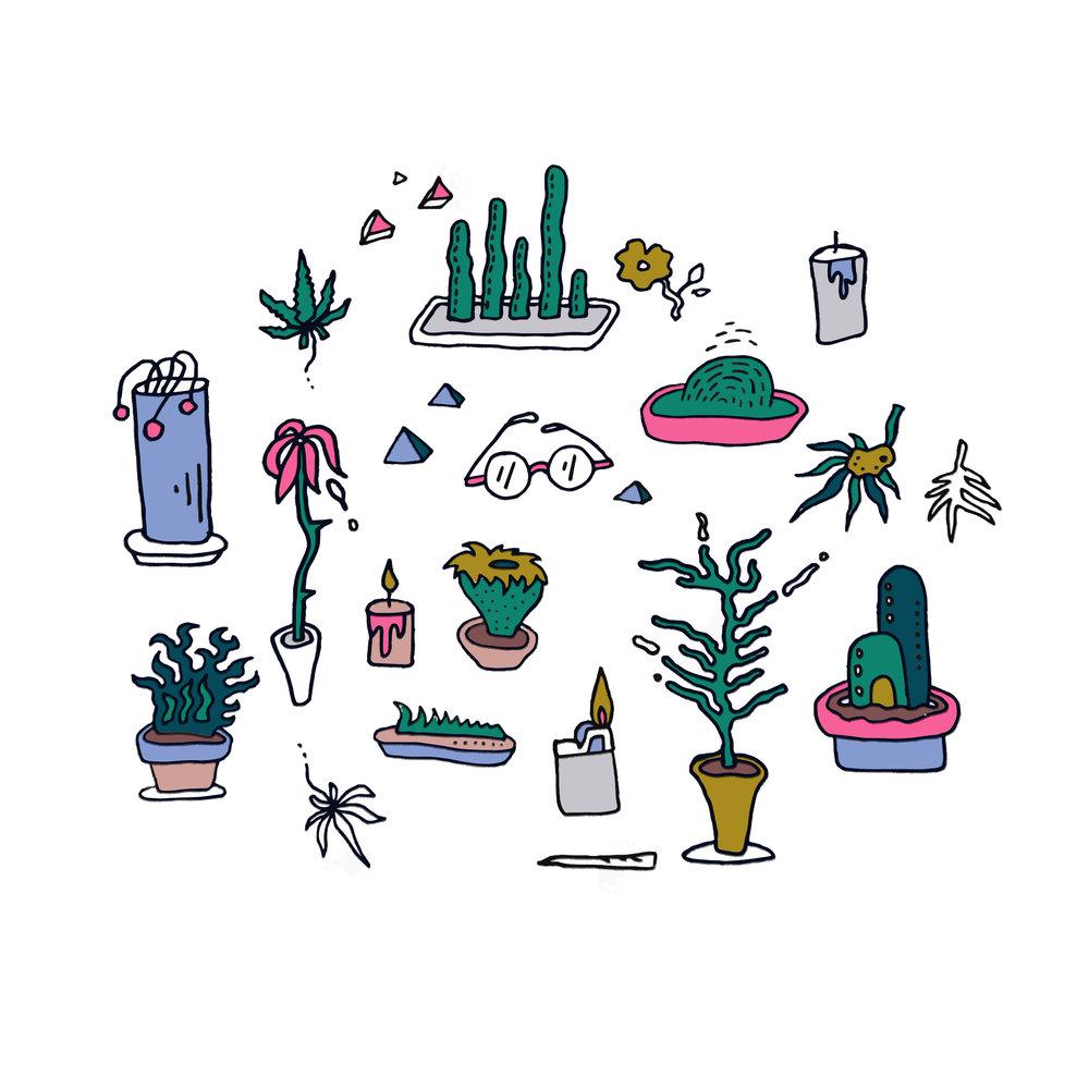 succulents_10.jpg