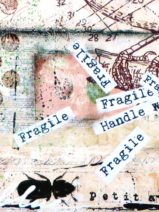 fragile 2 detail 3 Etsy
