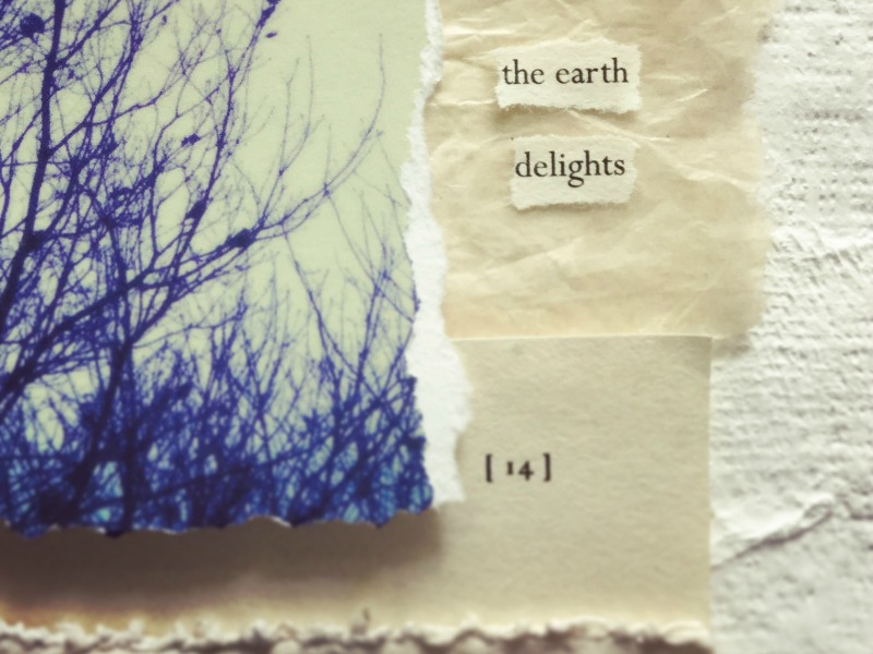 the Earth Delights W.jpg