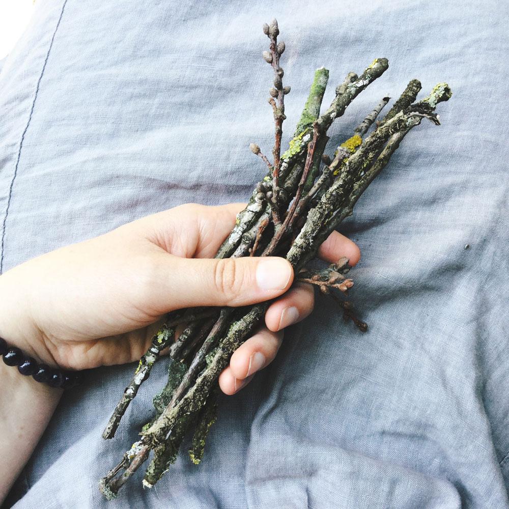 Twigs-1000W.jpg