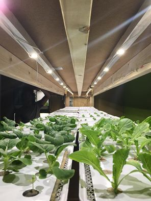 Vertical Farming at Replantable HQ