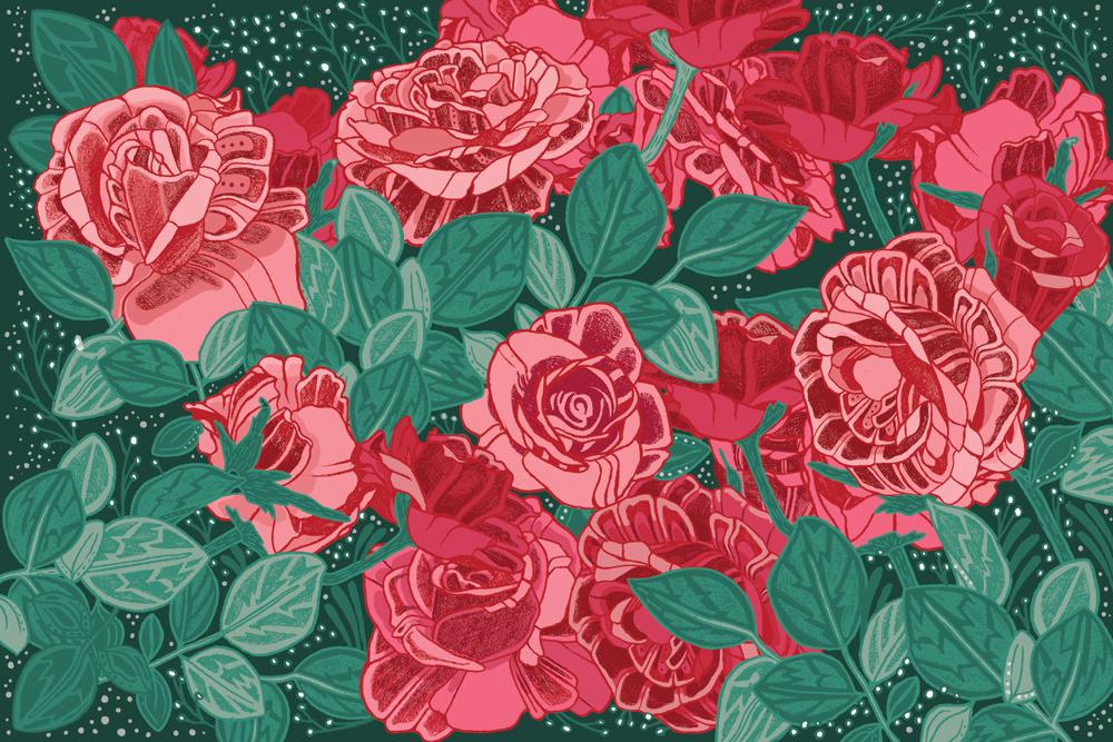 Roses_M4_Scanning.jpg