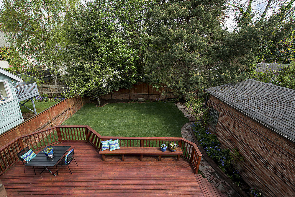 back yard from upstairs.jpg