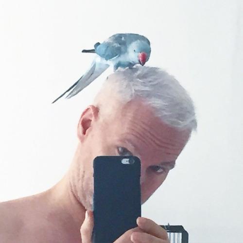 Klaus Biesenbach selfie. Image credit: Instagram / @klausbiesenbach