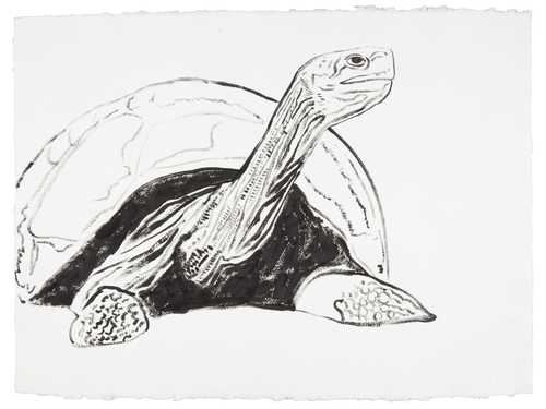 "Andy Warhol, ""Galapagos Tortoise (from ""Vanishing Animals"")"" , ca. 1986. Image credit: Christie's."