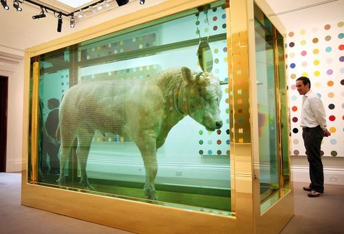 "Damien Hirst, ""The Golden Calf"" (2008). Image credit: The Catholic Catalogue."