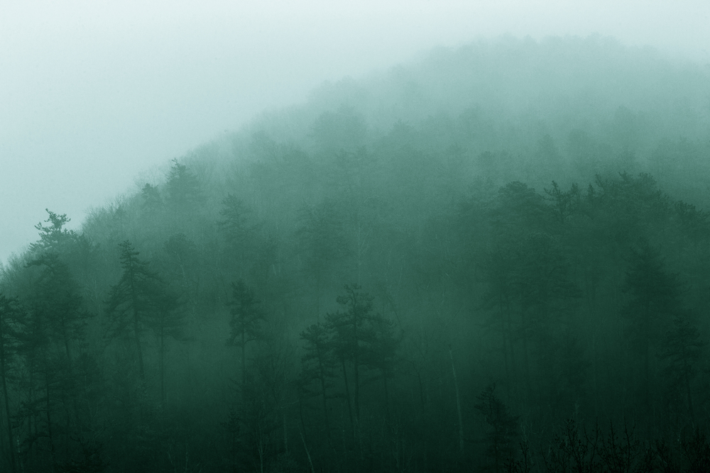 Wk2 - Landscape 3.jpg
