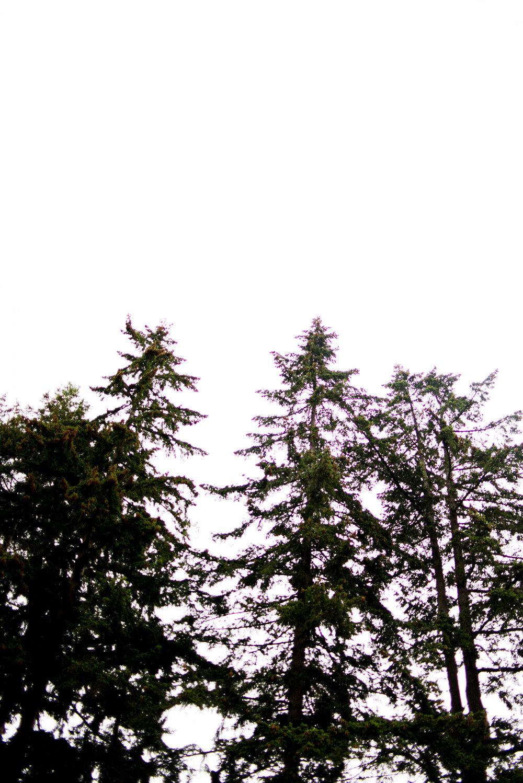 920 September Fall-60.jpg