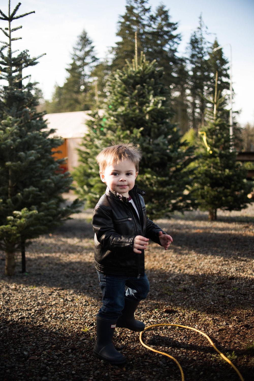 Christmas Tree 201-1.jpg