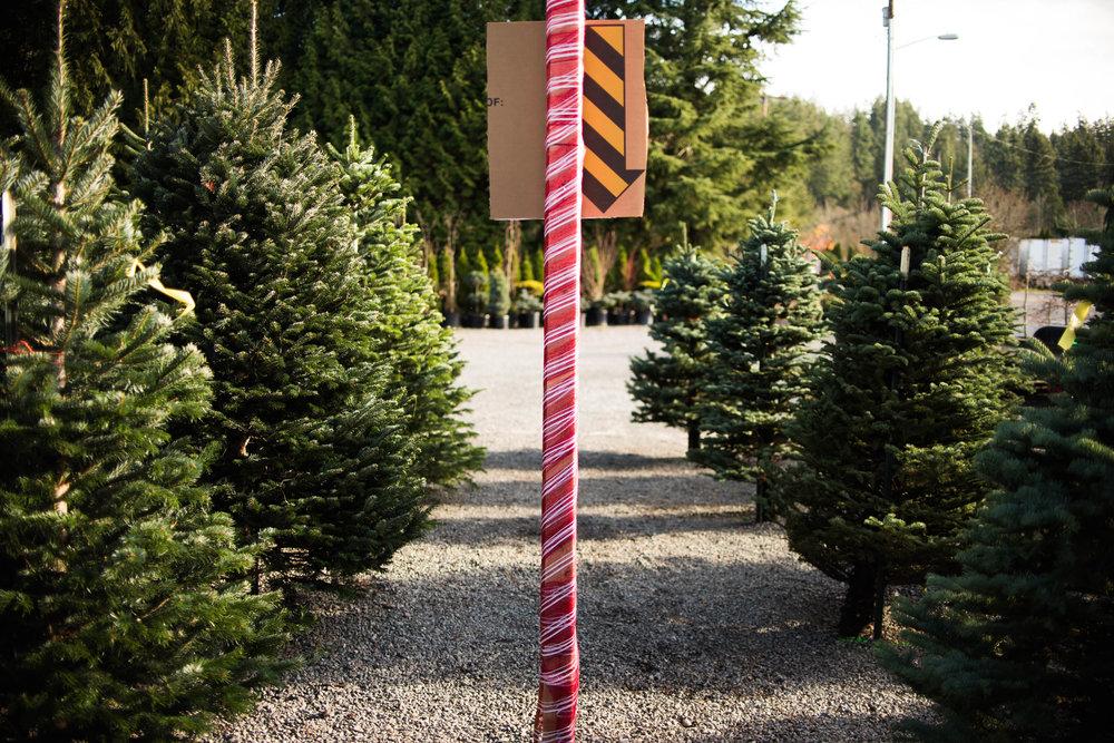 Christmas Tree 201-3.jpg