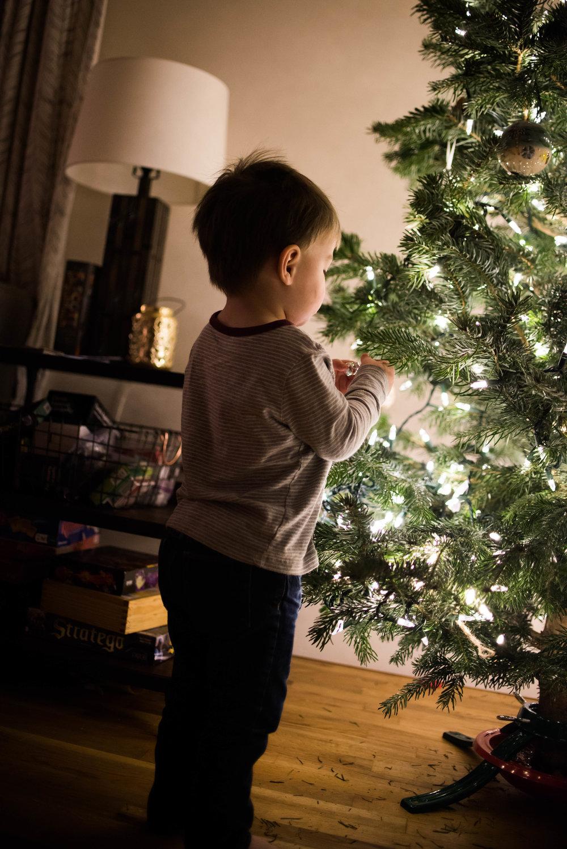 Christmas Tree 201-23.jpg