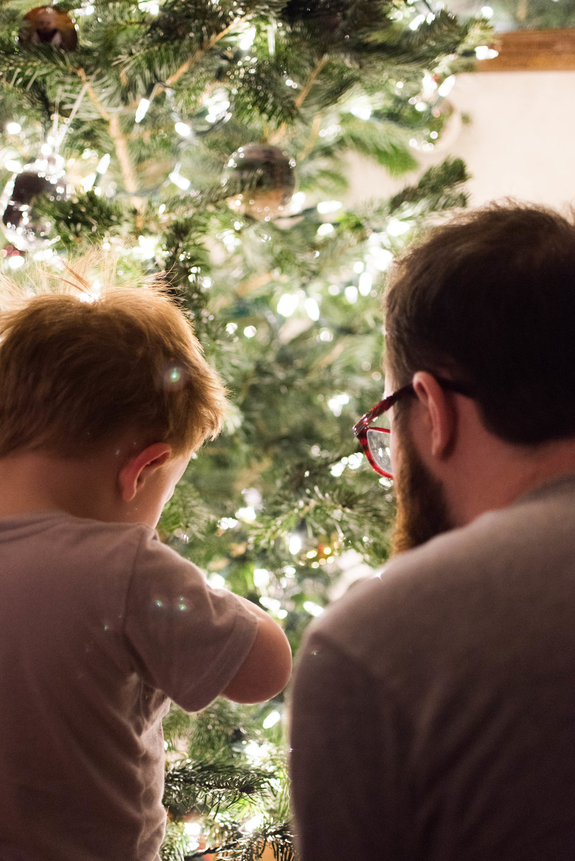 Christmas Tree 201-24.jpg