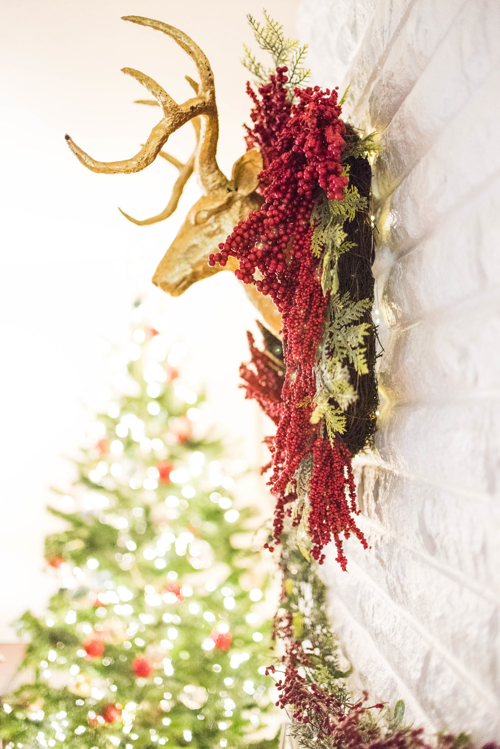 Christmas Decor 2016-32.jpg