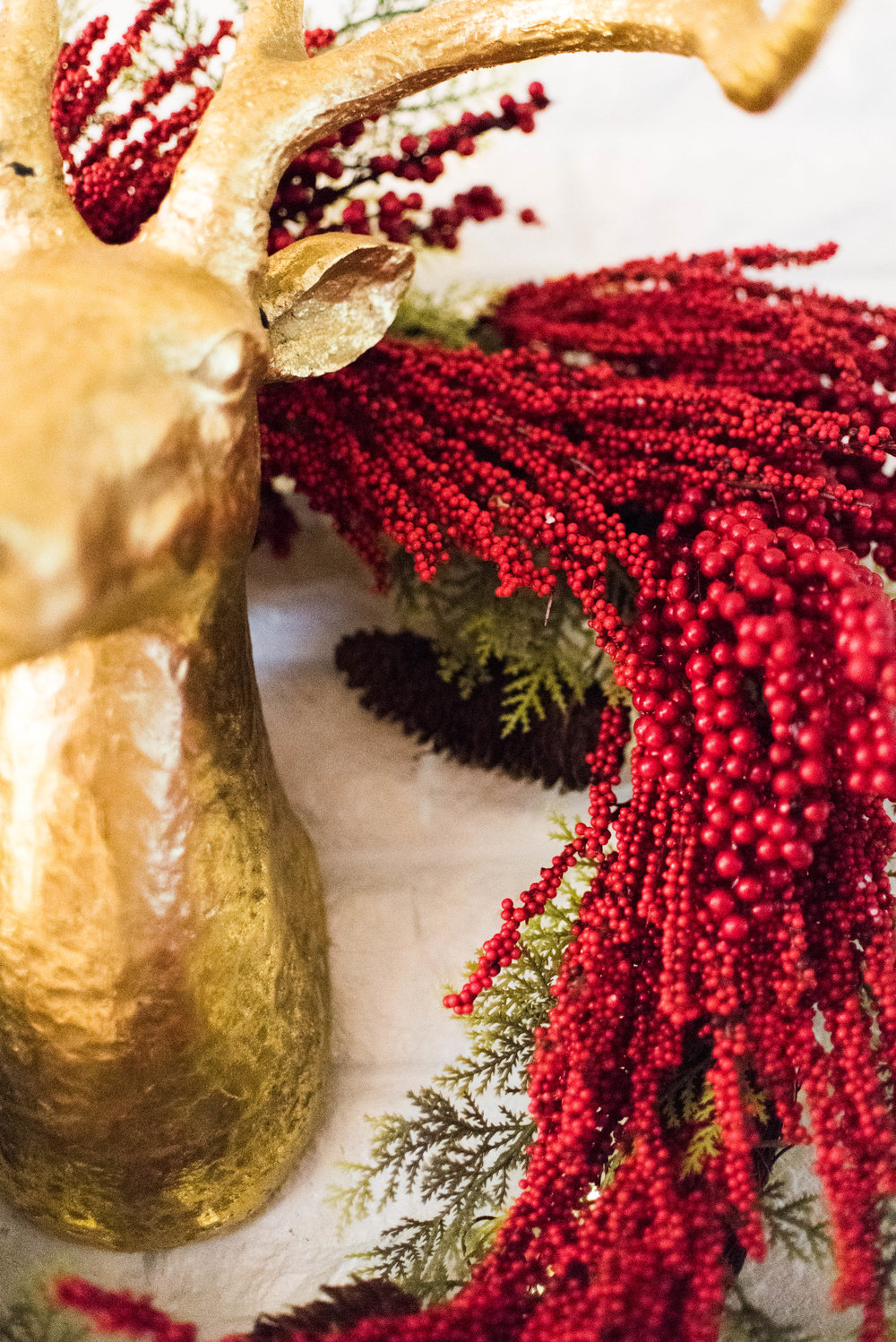 Christmas Decor 2016-31.jpg