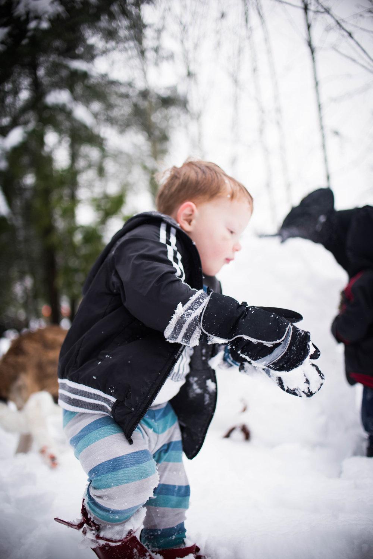 Feb17 Snow Day-6.jpg