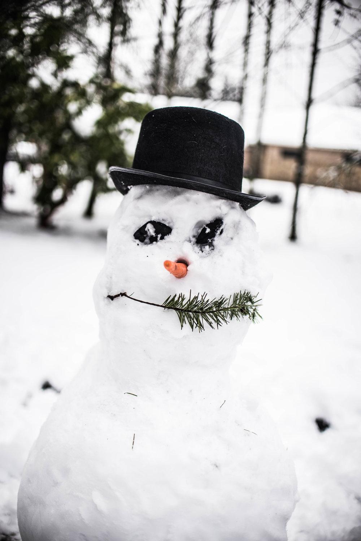 Feb17 Snow Day-18.jpg