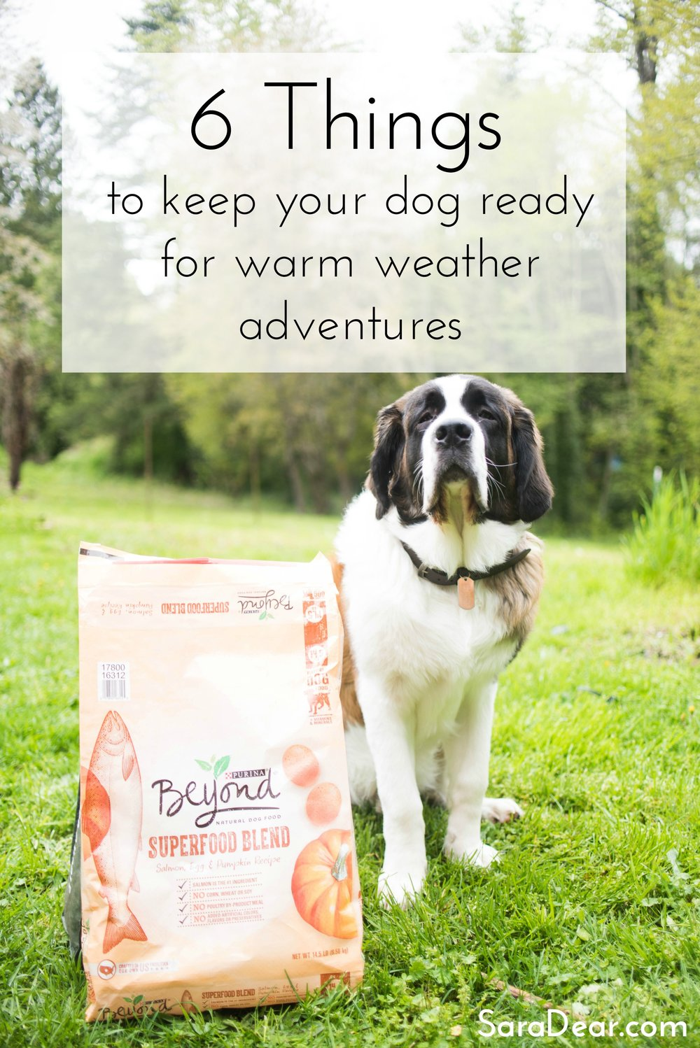 Purina Beyond 2-4 Graphic.jpg