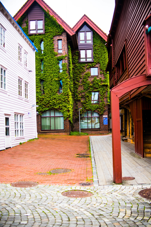 Bergen 2017-8.jpg